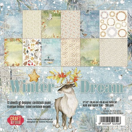 Craft & You - Winter Dream 12x12 collection kit