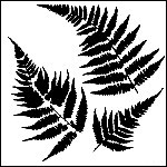 The Crafters Workshop-Templates-Mini Ferns