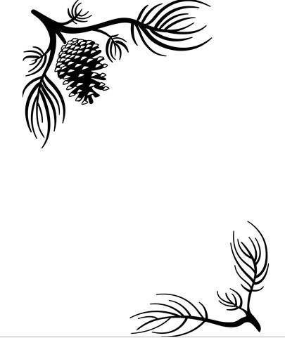Darice Embossing Folder - Size A2 - Pine Branches