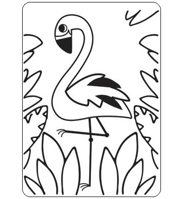 Darice Embossing Folder - (A2 Size) - Flamingo