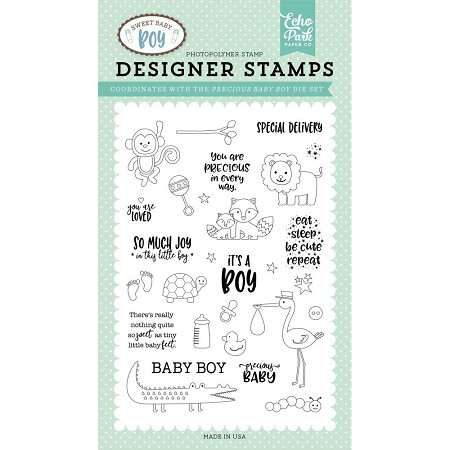 Echo Park - Sweet Baby Boy Collection - Precious Baby Boy Clear Stamps