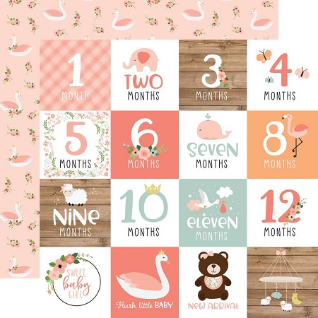 "Echo Park - Baby Girl Collection - Milestone Cards 12""x12"" Cardstock"
