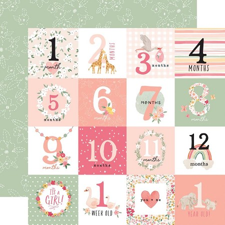 "Echo Park - Welcome Baby Girl Collection - Milestone Journaling Cards  12""x12"" Cardstock"