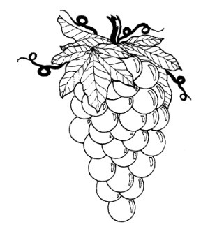 Frantic Stamper Cling-Mounted Rubber Stamp - Medium Grapes