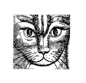Frantic Stamper Cling-Mounted Rubber Stamp - Kitty in Square