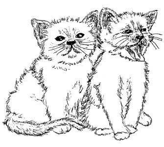 Frantic Stamper Cling-Mounted Rubber Stamp - Cute Kittens