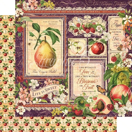 "Graphic 45 - Fruit & Flora Collection - Fruit & Flora 12""x12"" cardstock"