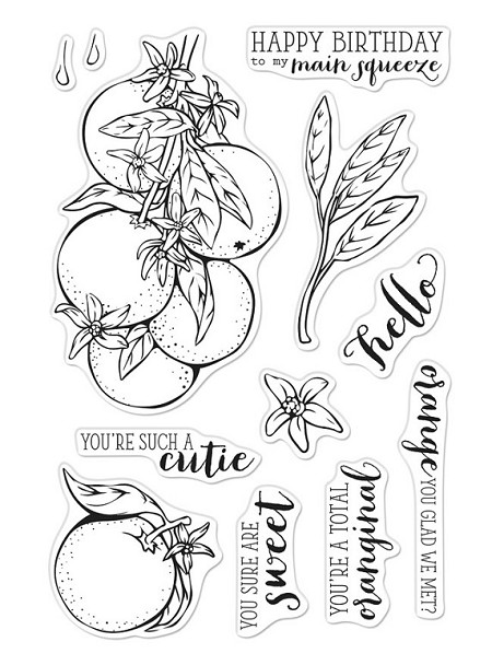Hero Arts - Clear Stamp - Orange Blossoms