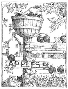 Impression Obsession Cling Mounted Rubber Stamp - Apples
