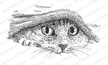 Impression Obsession - Cling Mounted Rubber Stamp - By Gary Robertson - Cat Under Covers