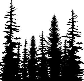 Impression Obsession - Cling Mounted Rubber Stamp - Cover A Card - Pine Trees