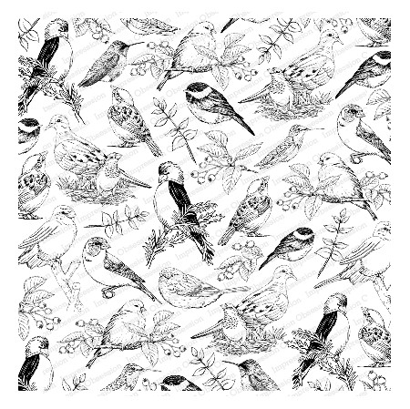 Impression Obsession - Cover A Card Sketched Birds Cling Mounted Rubber Stamp