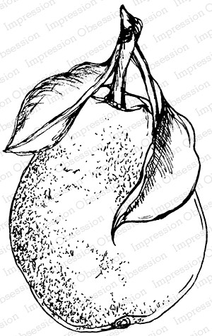 Impression Obsession - Cling Mounted Rubber Stamp - By Tara Caldwell - Sketched Pear