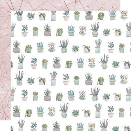 "KaiserCraft - Greenhouse Collection - Aloe (12""x12"" Double Sided Paper)"