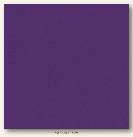 "My Mind's Eye - My Colors Cardstock - Heavyweight 12""x12"" - Cyber Grape"