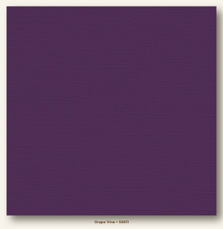 "My Mind's Eye - My Colors Cardstock - Canvas 12""x12"" - Grape Vine"