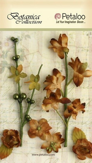 Petaloo - Botanica Collection - Floral Ephemera - Brown