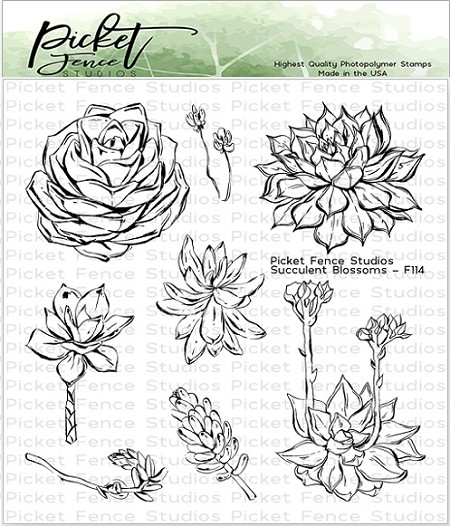 Picket Fence Studios - Succulent Blossoms Clear Stamps