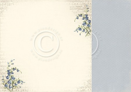 "Pion Design - My Beloved Son Collection - 12""x12"" Double Sided Cardstock - Bluebells"