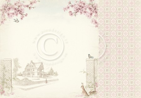 "Pion Design - Cherry Blossom Lane Collection - Cherry Blossom Lane - 12""x12"" Double Sided paper"