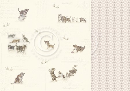 "Pion Design - Our Furry Friends Collection - 12""x12"" Double Sided paper - Leaving Pawprints"
