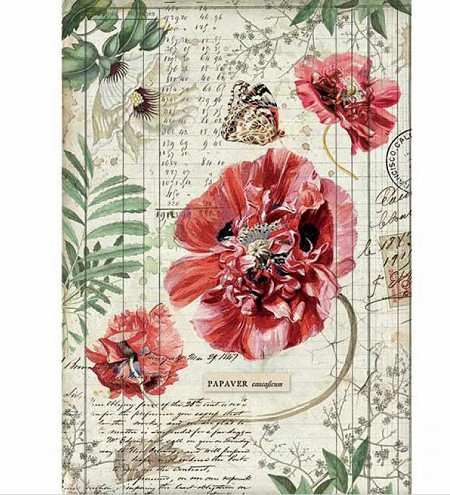 Stamperia - Poppies Rice Paper