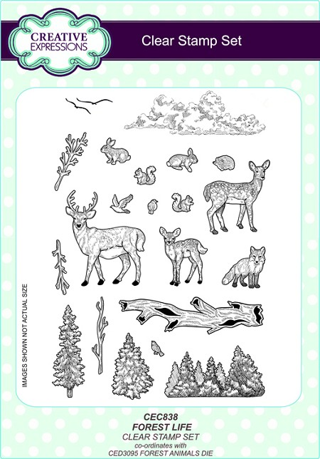 Sue Wilson Designs - Clear Stamp Set - Forest Life