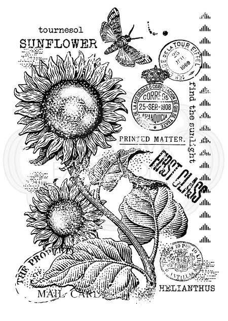 Woodware Craft - Clear Stamp - Vintage Sunflower