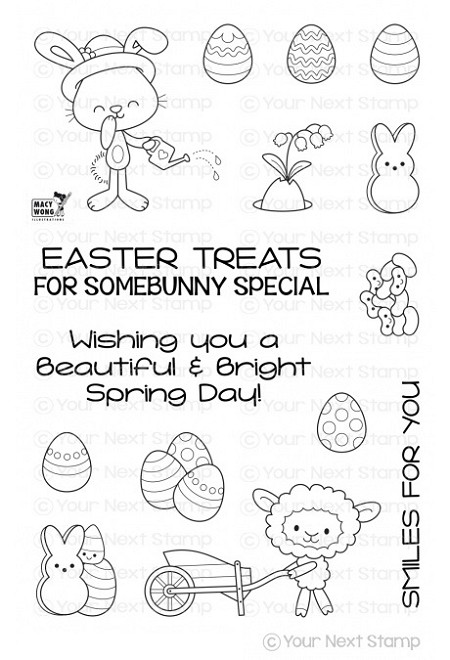 Your Next Stamp - Clear Stamp - Spring Treats