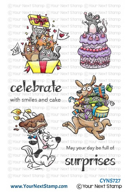 Your Next Stamp - Clear Stamp - Birthday Suprises